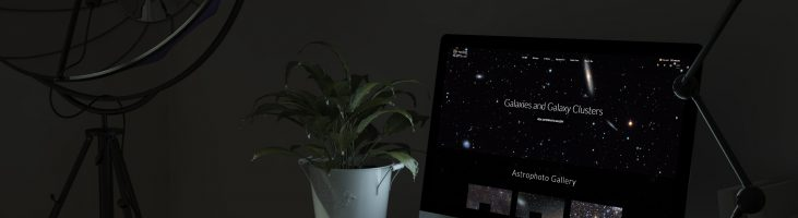 Restyling sito internet Blooming Stars